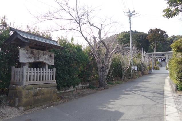 緑の木に囲まれた高家神社の参道