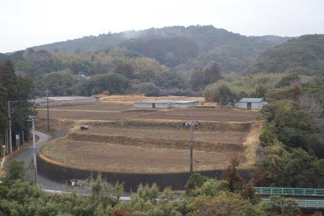 緑の山に囲まれた安房グリーンラインの棚田