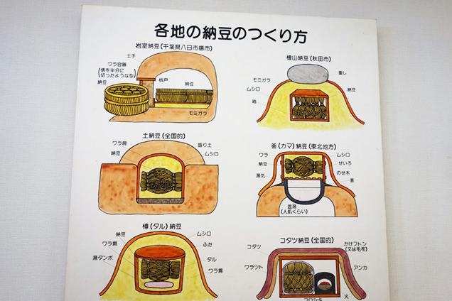 納豆展示館 納豆の作り方