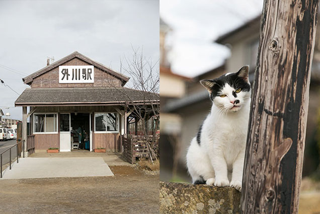 木造の外川駅は銚電の終点駅 変顔のネコも可愛い