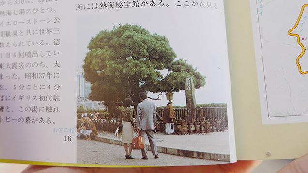当時のガイドブックに載っているお宮の松