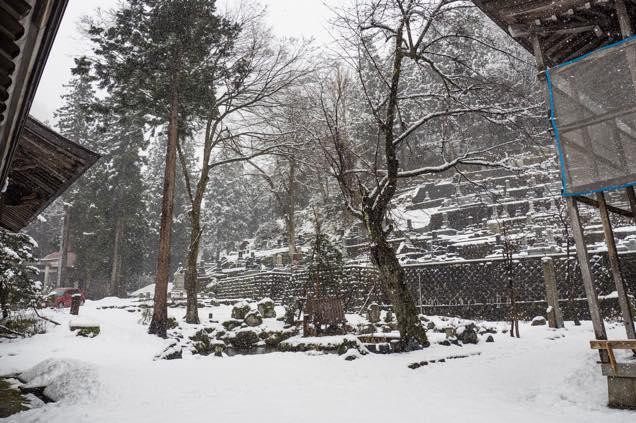 浦佐「善光寺」の池周辺