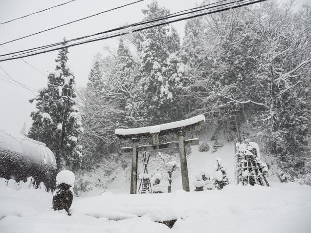 雪が積もった南部神社の鳥居
