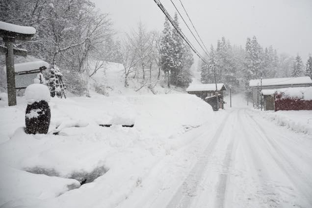 雪が積もった南部神社の鳥居の周辺