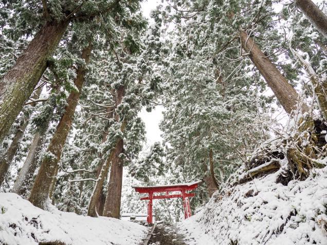 南部神社の境内にある赤い鳥居