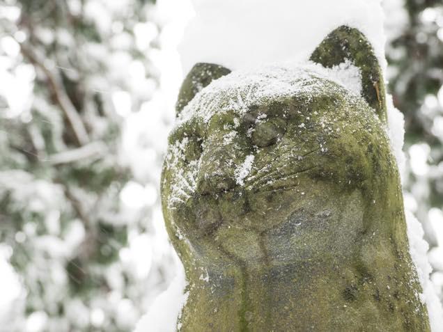 雪が積もった南部神社の猫叉権現