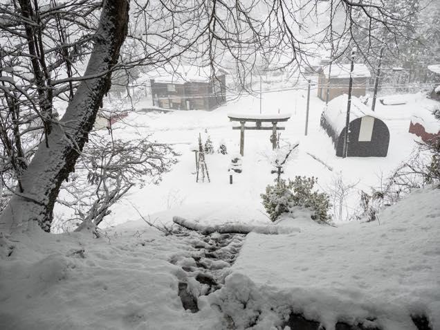 雪が積もった南部神社から見下ろす境内