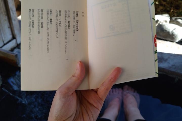 文学のメッカ修善寺にて「温泉旅館で読むならこれ!」を決めてきた