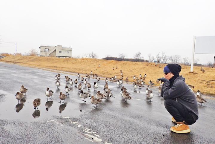 ♪鳥くんと巡るラムサール条約登録湿地 バードウォッチング旅