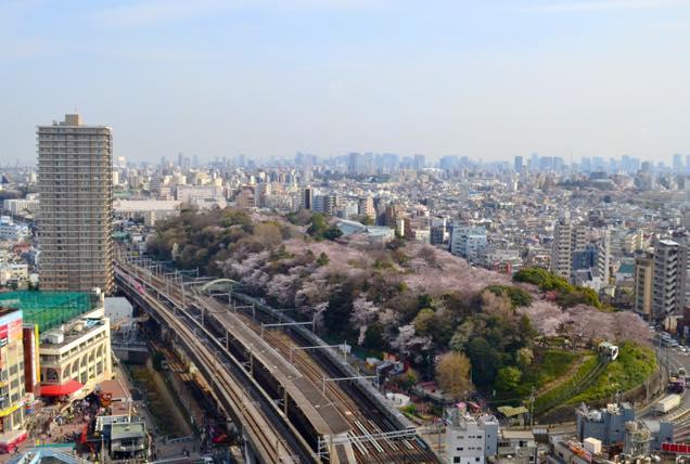 新幹線と飛鳥山