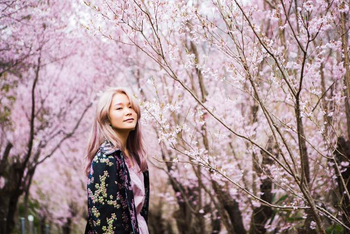 フォトジェニックなお花見スポットは福島にあり