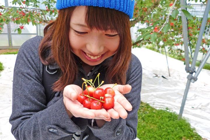 【山形女子旅】さくらんぼ狩り&フルーツで頑張る自分にビタミン注入