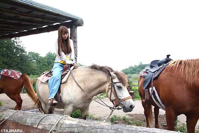 シャロレー牧場 乗馬体験