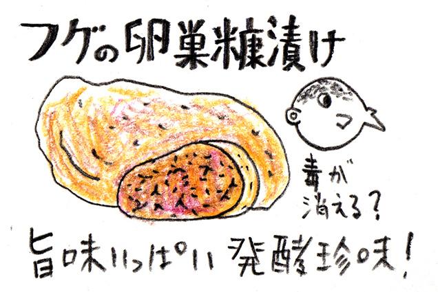 フグの卵巣糠漬けイラスト