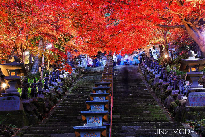 秋深まる紅葉列島──見頃を迎える関東・伊豆・北陸の絶景の紅葉を訪ねて
