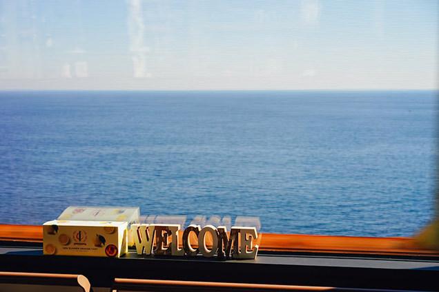 伊豆クレイル 車窓からの風景