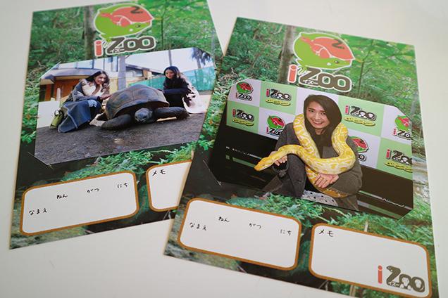 体感型動物園iZooのニシキヘビと記念写真
