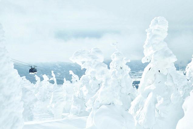 蔵王温泉スキー場 樹氷