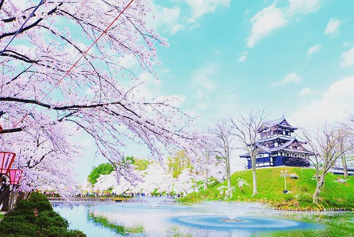 東日本を代表する桜の名所が大集結