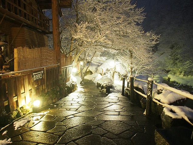 宝川温泉 汪泉閣 庭園