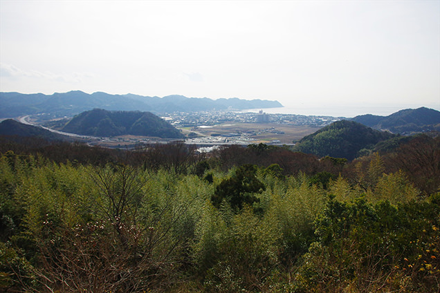 とみやま水仙遊歩道 展望所からの風景