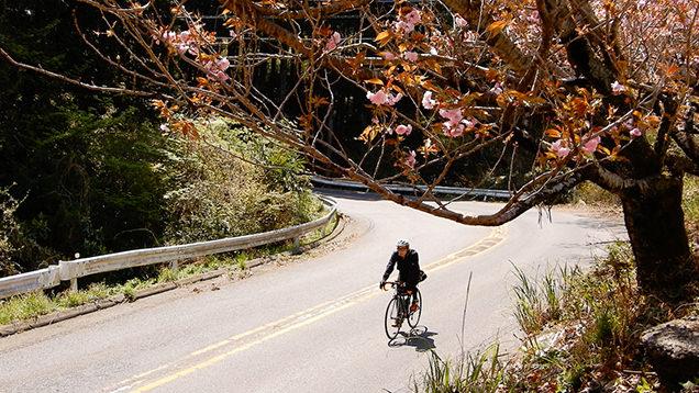 筑波山をロードバイクで下山
