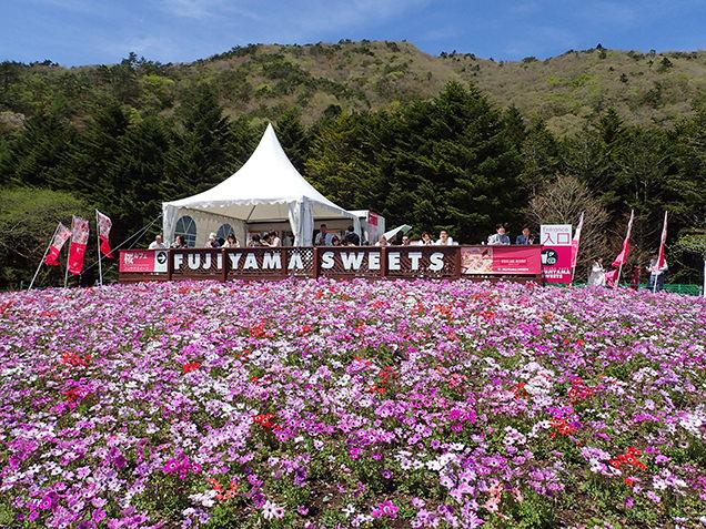 桜カフェ FUJIYAMA SWEETS 外観