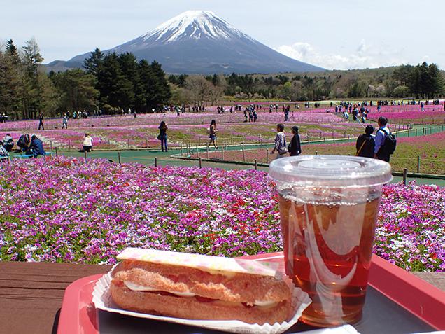 桜カフェ FUJIYAMA SWEETS 桜エクレール