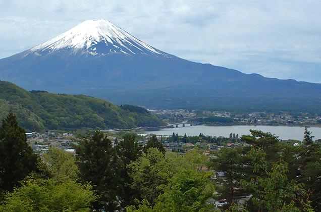 Retreat camp まほろばからの富士山