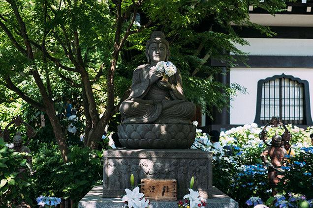 長谷寺 仏像とあじさい