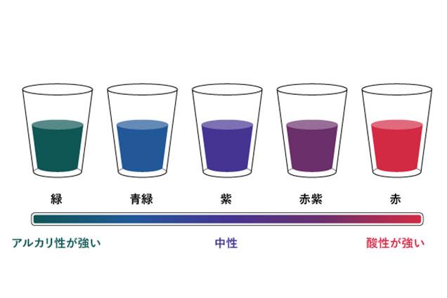 pH実験の色変化