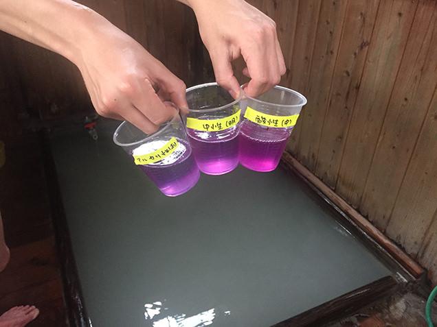 満を持して採取したお湯を、その場で紫キャベツ液に入れてみると……