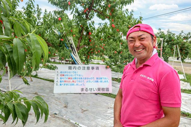 まるせい果樹園社長、佐藤さん