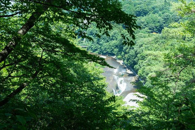 観瀑台からの眺め