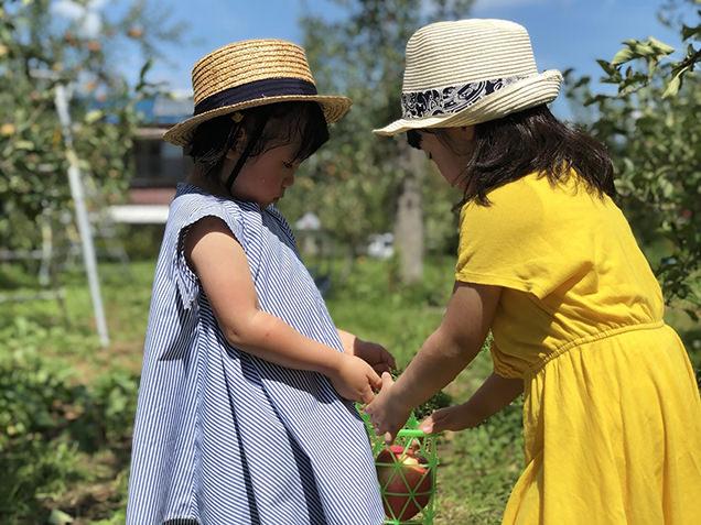 原田農園でりんご狩り
