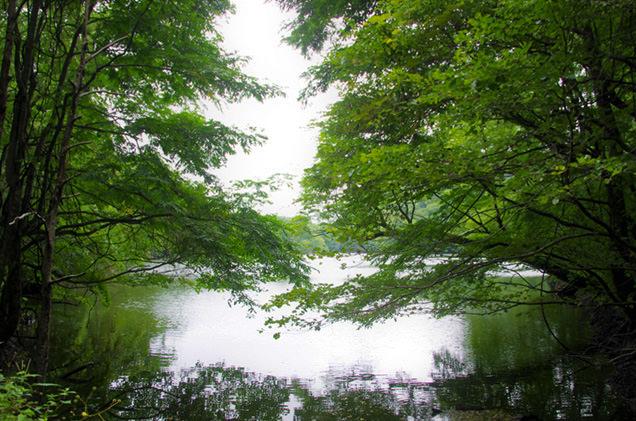 鶏頭池(けとば)の池