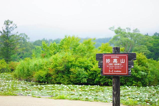 いもり池と看板