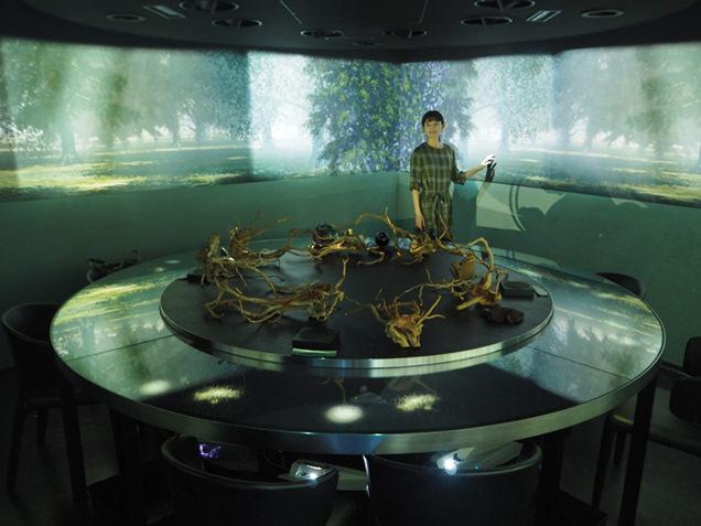 「木の根の世界」がテーマの地下空間