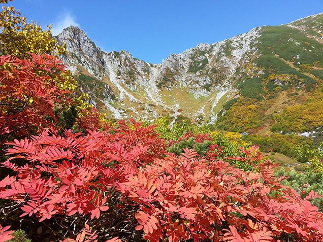 晴れた日の千畳敷カールの紅葉風景