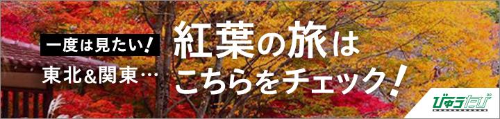 東北、関東の紅葉の旅