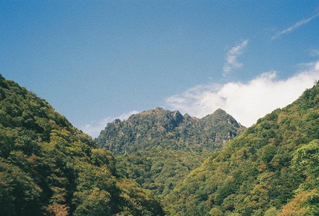 西沢渓谷の自然 山