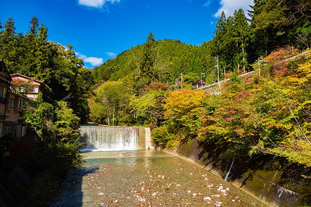 川沿いは紅葉し始めていてきれい