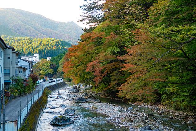 川沿いの紅葉は、ちょうどよい赤から緑へのグラデーションを見せてくれた