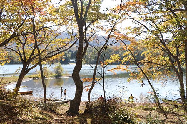 宇樽部キャンプ場の紅葉