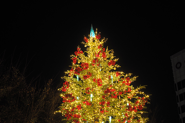 六本木ヒルズ内66プラザのクリスマスツリー