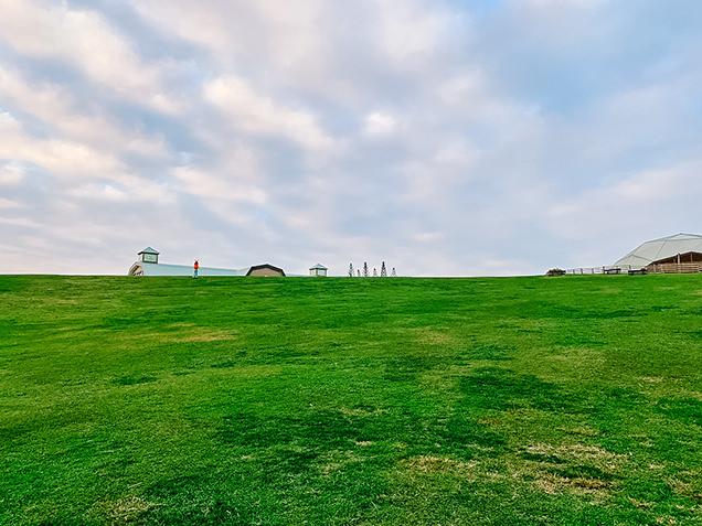 千葉 マザー牧場 自然