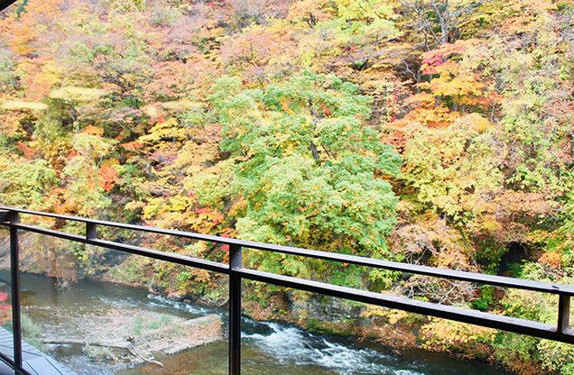 山水閣のロビーから見える紅葉