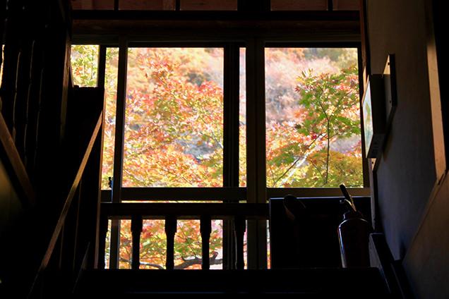 湯治部の館内から見える紅葉