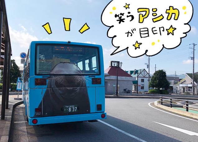 安房鴨川駅 鴨川シーワールド シャトルバス