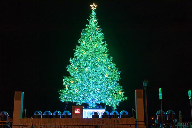「金森赤レンガ倉庫」のクリスマスツリー